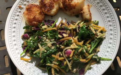 Meal Ideas Day 19